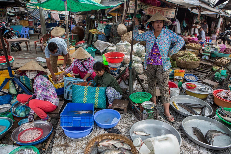 Vietnam030