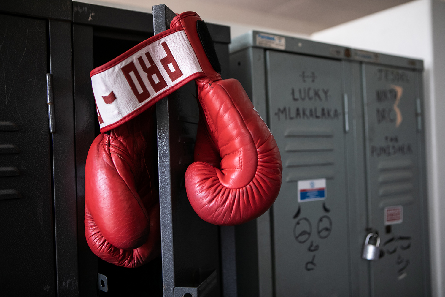 Project info: